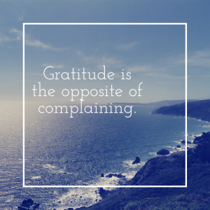 One Thing: Gratitude