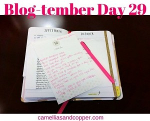 Blog-tember Day 29