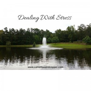 Dealing With Stress & How To Unwind